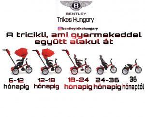0608F5C8 A2BC 4CC3 A22E B2328BA2321A 300x242 Prémium Kategóriás Limitált Bentley Trike 6 az 1 ben Babakocsi Átalakítható Tricikli Fekete Arany